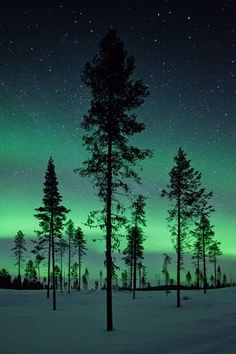 Stunning Aurora.