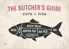 Cut of meat set. Poster Butcher diagram and scheme - Fish. Animal Science, Butcher Shop, Menu Design, Survival Skills, Life Skills, Photo Book, Carne, Helpful Hints, How To Draw Hands
