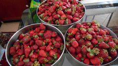 Σάλτσα φράουλας για τα γλυκά και τα παγωτά μας -idiva.gr Strawberry, Fruit, Food, Essen, Strawberry Fruit, Meals, Strawberries, Yemek, Eten