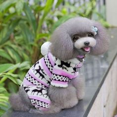 New Arrival Warm Jumpsuit Coat Clothes For Dog