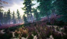 Dark Roots, Mountains, Game, Nature, Travel, Naturaleza, Viajes, Venison, Gaming