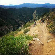 Wildway Crew: Gabriella Auer (Mountain Biking)
