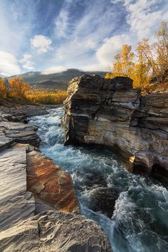 Indian Summer - Abisko Canyon, Sept 2015.  The peak of autumn in the beautiful Abisko National park.