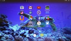 AndEX Live CD Now Lets You Run Android 5.1.1 Lollipop on Your PC with Google Apps http://ift.tt/1OvCdl3