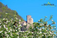 Frühling rund um Burg Hocheppan