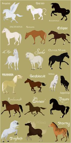 Famous horses list fantasy horses too- Poupsi 1621 Cute Horses, Pretty Horses, Beautiful Horses, Horse Drawings, Animal Drawings, Arte Equina, Horse Facts, Horse Quotes, Horse Pictures