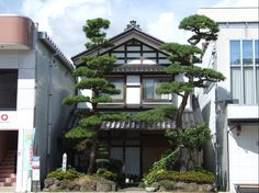 Le plus récent Instantanés Style Architectural japonais Style Architecture Du Japon, Architecture Cool, Japanese Architecture, Sustainable Architecture, Residential Architecture, Pavilion Architecture, Contemporary Architecture, Japanese Style House, Traditional Japanese House