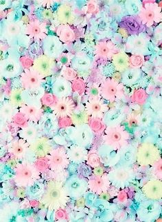 38 ideas wall paper iphone pastel blumen for 2019 Flower Phone Wallpaper, Pastel Wallpaper, Cellphone Wallpaper, Iphone Wallpaper, Cute Wallpaper Backgrounds, Pretty Wallpapers, Flower Backgrounds, Pastel Flowers, Beautiful Flowers