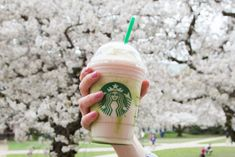 For the first time, Starbucks stores in the U.S. are offering Cherry Blossom Frappuccino inspired by the Japanese springtime tradition. The beverage will be available participating licensed stores for a limited time March 15-20.