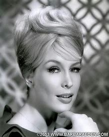 A Classic 1964 Head Shot Of Barbara Eden During Her Time With Columbia Pictures. Hollywood Icons, Hollywood Actor, Vintage Hollywood, Hollywood Glamour, Hollywood Stars, Hollywood Actresses, Classic Hollywood, Actors & Actresses, Hollywood Girls