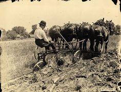"Znalezione obrazy dla zapytania ""history of agriculture"""
