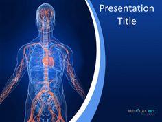 Human stomach powerpoint template this stunning template showing vascular system httpmedicalppttemplatesmedical toneelgroepblik Images