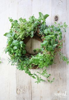 Design and function come together with this DIY Herb Wreath. It starts with @naturescare organic soil for endless supply of herbs and style. #ad