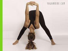 piegamento-in-avanti-a-gambe-divaricate-prasarita-padottanansana http://www.yoganride.com/5-posizioni-yoga-per-allungare-il-bicipite-femorale/