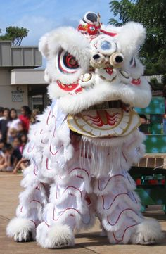 Lion dances are performed as a symbol of protection and good luck. It is also believed that the noise from the drums, the face of the lion, and the way the lion dances scares away bad or evil spirits.