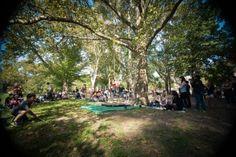 TinyCircus performing in Clark Park