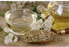 Yarrow Tea and Its Amazing Benefits for Allergies, Digestion and Inflammation - Asthma Treatment