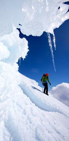 Franz Josef Glacier - NZ