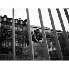 #lion #fadedcreativity #pictures #pics #photo #photodocumentation #documentation #reportage #SB #Saarbrücken #Saarland #Saar #saarbrooklyn #street #streetlife #walkby #photowalk #dailylife #everyday #SPi_Travel #bnw_planet #fuji #fujifilm #xt2 #fujifilmxt2 #mood #citylife #bw