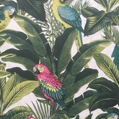Tropical Palm Leaf Green & Pink Parrot Wallpaper - Roll for sale online Bohemian House, Bohemian Decor, Parrot Wallpaper, Nature Collage, Bohemian Interior Design, How To Antique Wood, Vintage Frames, Framed Art, Vibrant Colors