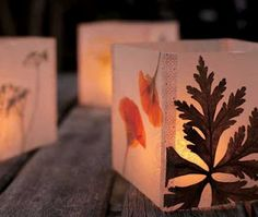 Lanterns using panels with flowers pressed between waxed paper that have been taped together.