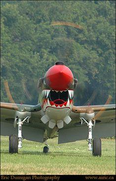 Curtis P 40 Warhawk Aircraft Propeller, Ww2 Aircraft, Fighter Aircraft, Military Aircraft, Fighter Jets, Aircraft Carrier, Spitfire Supermarine, Airplane Art, Airplane Room