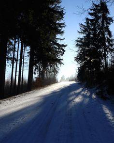 #klubkocestuje #freezing #naturelovers #2017 #newyearstrip #forest #walking #trip Nikde nikdo a nahoře všichni!🌨❄️☺🌲