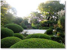Jardín japonés en Kyoto
