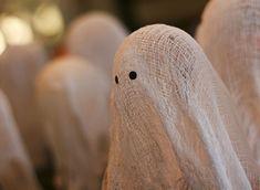 Starch Ghosts