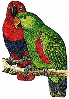 Two parrots photo stitch free embroidery design - Photo stitch embroidery - Machine embroidery forum