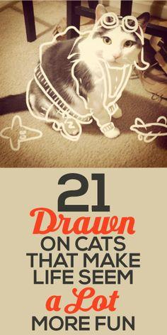 21 Drawn On Cats That Make Life Seem A LOT More Fun!