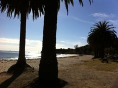 An afternoon in Refugio State Beach (California Travel) http://www.examiner.com/article/goleta-attractions-refugio-state-beach