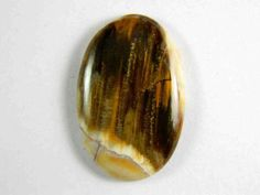 34x22 mm Natural Peanut Wood Petrified Cabochon Oval by KGNSHOP