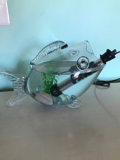 Electric fish? Electric, Real Estate, Tours, Fish, Real Estates, Pisces