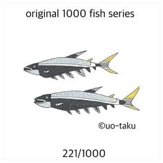 【uo_taku】さんのInstagramをピンしています。 《221/1000  以前に展示風景をご紹介しましたが、1,000枚の無地の名刺に1000種類の形も柄も違うオリジナルの魚を4色(黒、金、銀、紙の白)で描きました。 2015年11月6日より定期ですが、1日1匹を目安にご紹介していきます。どうぞお楽しみに。  i introduce the exhibition landscape previously.I drew a 1000 fish.Form also pattern and shape is  different all.all of design by original.so i used only 4colors(black.white.gold.silver) size is business card size(9cm×5cm) i will introduce one fish per day. please enjoy it. 2015.November6 start…