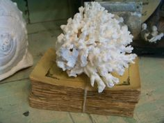white coral (must find something similar...)