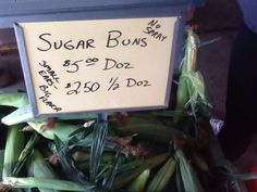 Sugar Buns: small heirloom variety sweet corn from Rich Valley Farm