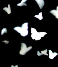 Eco Friendly BUTTERFLY Confetti Wedding Confetti (pkg 350... review | buy, shop with friends, sale | Kaboodle