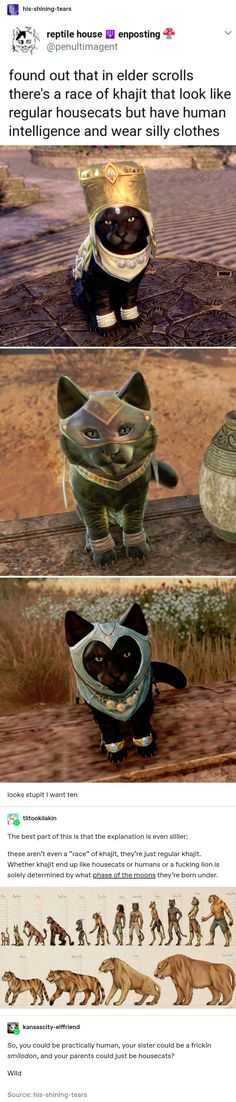 I reptile house EM enposting E found out that in elder scrolls there's a race of khajit that look like regular housecats but have human intelligence and wear silly clothes - iFunny :) Satire, Tumblr Funny, Funny Memes, Funny Cute, Hilarious, Lol, Thing 1, Skyrim, Gaming Memes