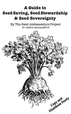 A Guide to Seed Saving (pdf)  find working link here:  http://www.seedambassadors.org/docs/seedzine4handout.pdf