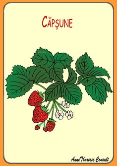 Biology Clip Art by Phillip Martin, Strawberry Plant Strawberry Patch, Strawberry Plants, Thunder Cake, No Bake Desserts, Cake Recipes, Plant Leaves, Food And Drink, Shared Reading, Read Aloud