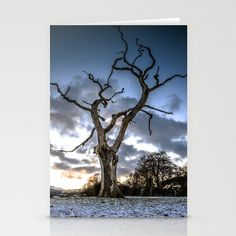 Dead of Winters Light Stationery Cards by David P Hunter - $12.00