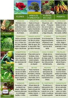 Calendario de Junio para el jardinero