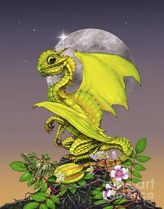 Star Fruit Dragon Digital Art by Stanley Morrison
