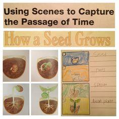 Illustration Study, Technique 6: Passage of Time