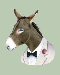 This donkey is extremely stubborn about sharp fashion. He is so dedicated to his cause, in fact, he has been known to wear this white tuxedo