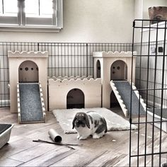 Custom play houses and furniture for your small pets by BunsBedsAndBeyond