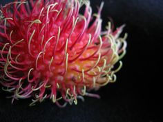 A Rambutan, I had one of these today, they are soooo good!