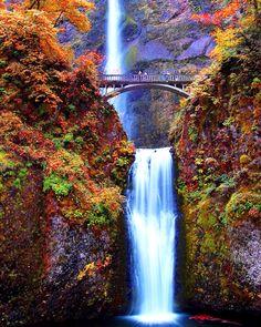 Beautiful fall leaves & waterfall..