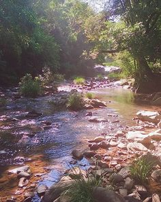 #river #nature #vespasianocorrea #camping